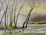River Wharfe at Bolton Abbey by Grahm Wardle